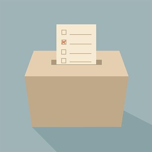 Billede af projektet Kommunalvalg 2013